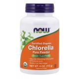 Chlorella Organic Pure Powder