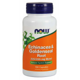 Echinacea & Goldenseal Root