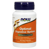 Optimal Digestive System