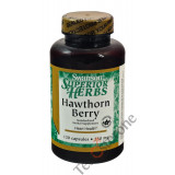 Hawthorn Extract Berry