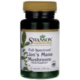 Full Spectrum Lions Mane Mushroom