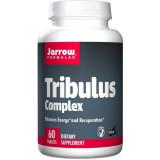 Tribulus Complex